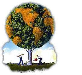 el-desarrollo-sustentable
