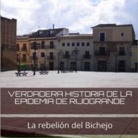 VERDADERA HISTORIA DE LA EPIDEMIA DE RIJOGRANDE: el sargento.